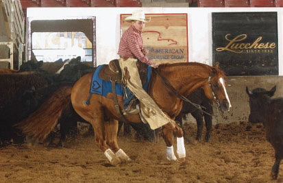 Brown Cow Customer Colton Strain rides in a competition using one of our custom made saddle blankets