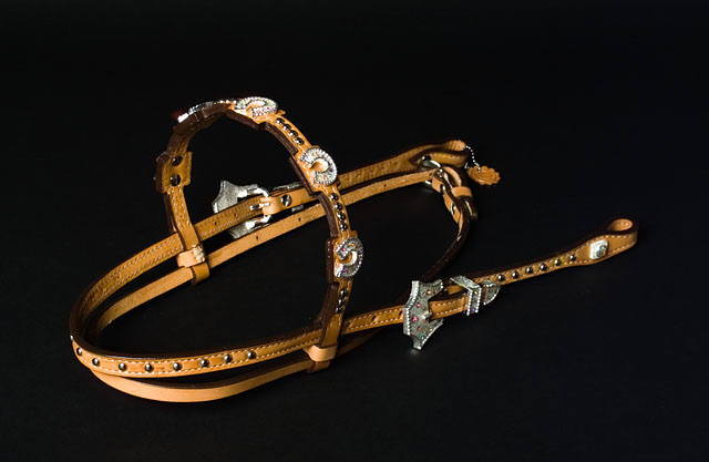 Alamo Prizm Collection Headstall