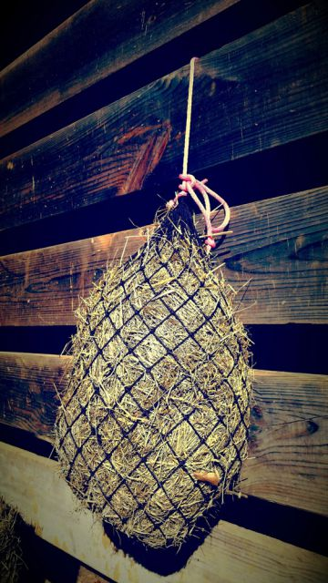 Small Feeding Net by Texas Haynet: click to enlarge