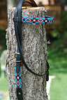 """Nambe Spring"" Handmade beadwork headstall from The Brown Cow Studio"