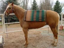 Hand-Woven Saddle Blanket by Christina Bergh
