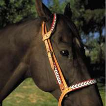 Handmade Beaded One-Ear Headstall and Noseband