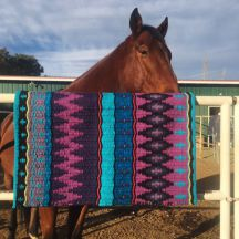 Hand Woven Saddle Blanket by Christina Bergh