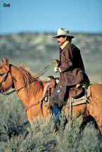 Rangewax Drifter by Schaefer Ranchwear