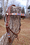 """Tribal Harvest"" Handmade Beadwork Headstall"