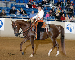 Brown Cow customer Diane Athey on her horse with a saddle blanket woven by Christina Bergh.